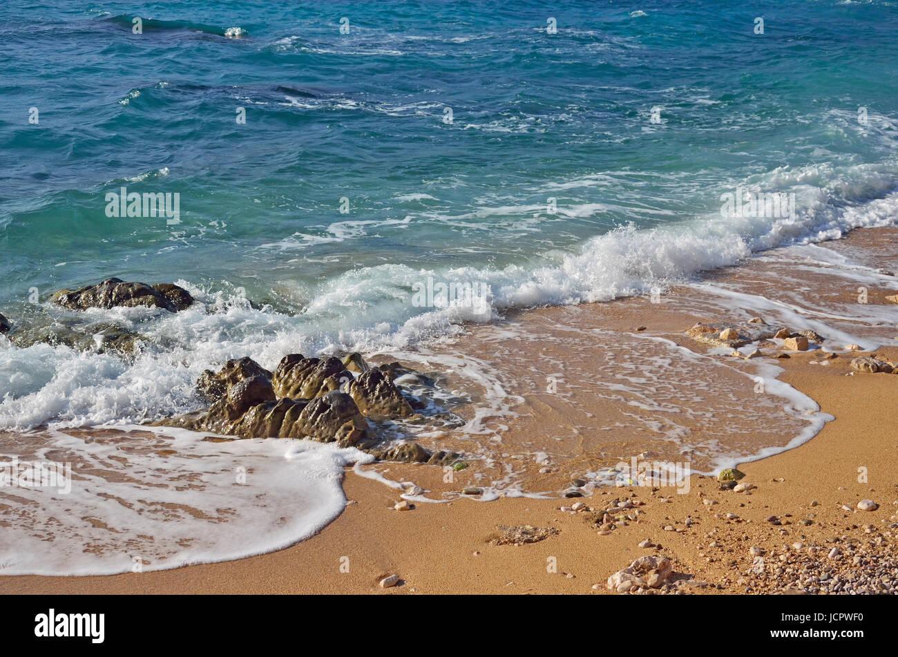 44228894 Superbe Plage Et Surfeur À Bas Marée Papier-Peint