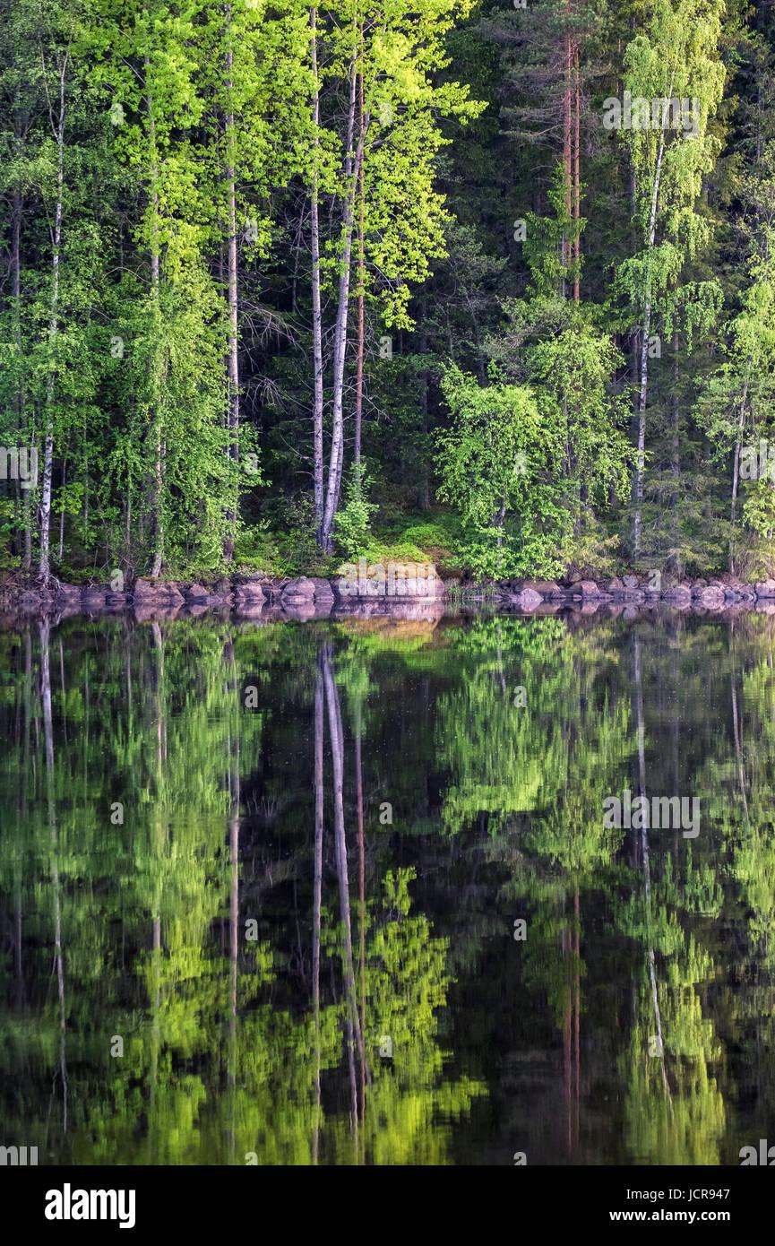 Belle forêt du lac de réflexion à bright journée d'été dans le Parc National de Photo Stock