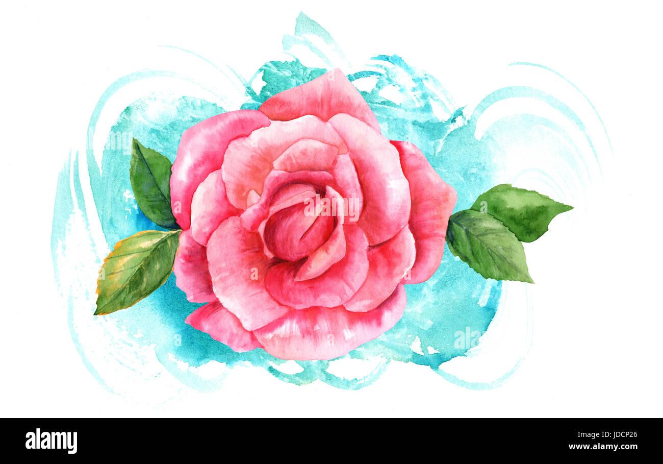 Une Aquarelle Dessin D Une Fleur Rose Rose Peint Dans Le Style De L