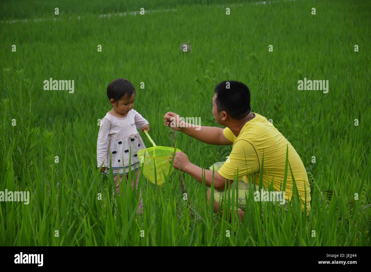 Xinlei Photos & Xinlei Images - Alamy