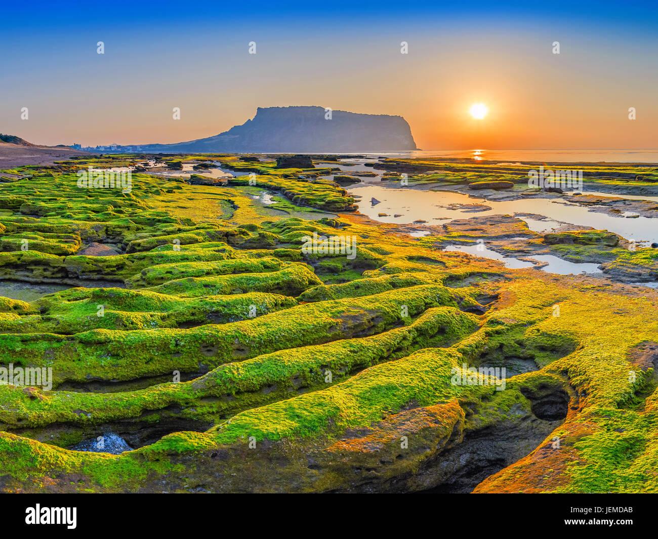 Lever du soleil à Jeju-Do Seongsan Ilchulbong, l'île de Jeju, Corée du Sud Photo Stock