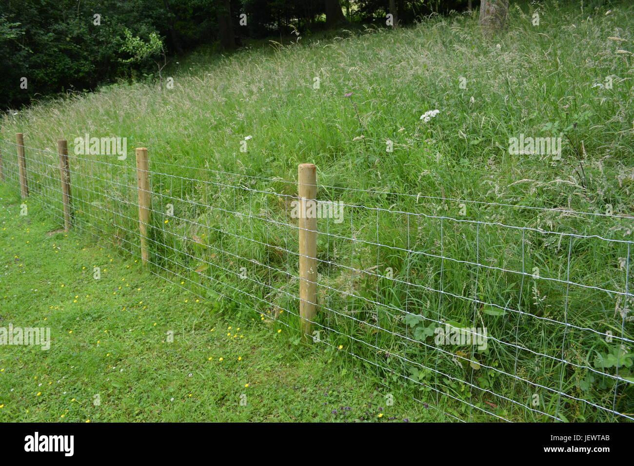 Jardin clôture de grillage métallique stock avec des poteaux ...