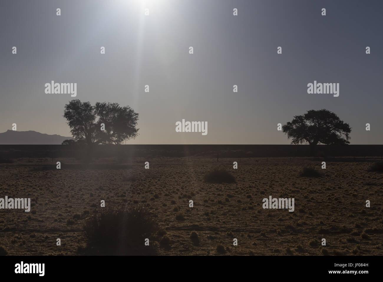 Ambiance du soir dans le désert Photo Stock