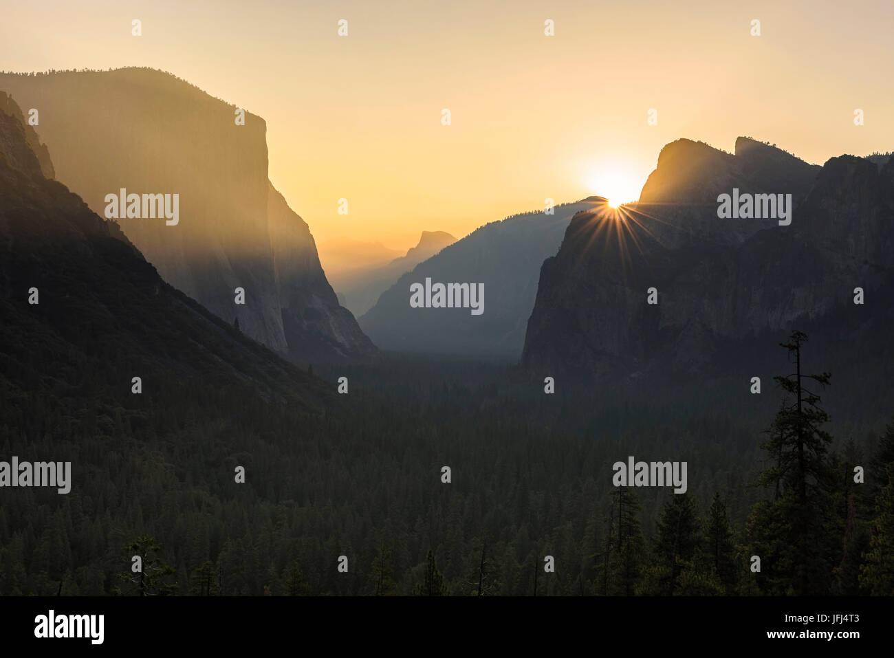 Lumière dorée dans le parc national de Yosemite, aux États-Unis, en Californie Banque D'Images