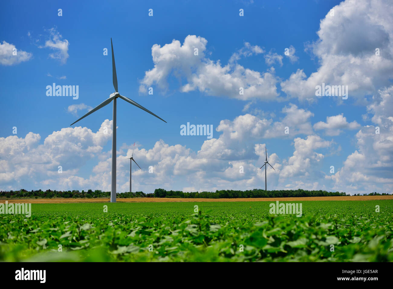 Champ éolien éoliennes et ferme sur contryside dans une journée ensoleillée Banque D'Images