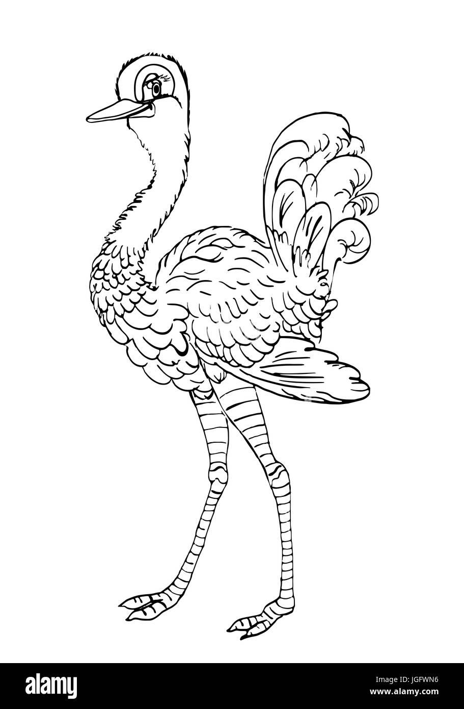 Bon D Oiseaux Droles D Autruche Esquisse Pour Des Cahiers De Coloriage Photo Stock Alamy
