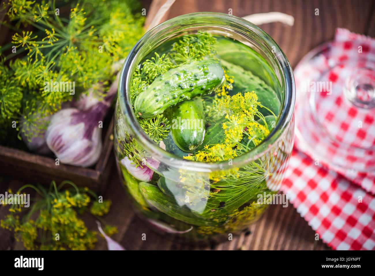Organiques traditionnelles et des concombres cornichons au salé dans un bocal en verre Photo Stock