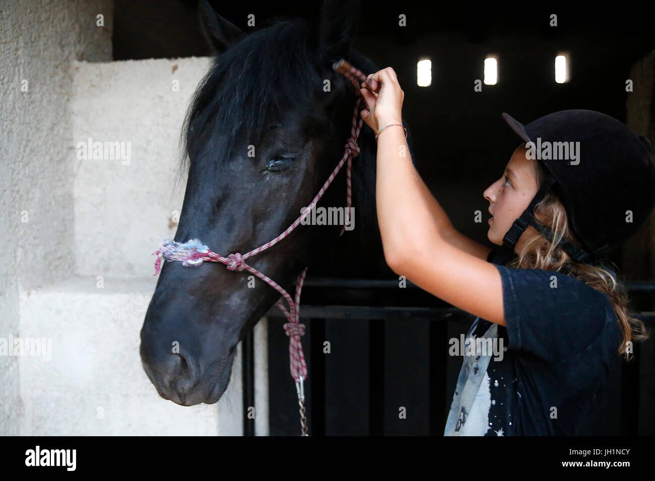 Adolescent s'occuper d'un cheval. L'Italie. Photo Stock