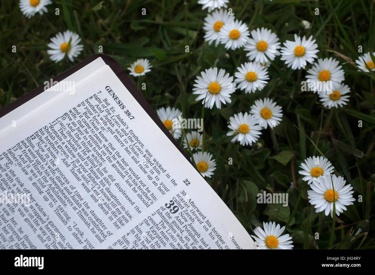 Bible ouverte. la genèse. Photo Stock