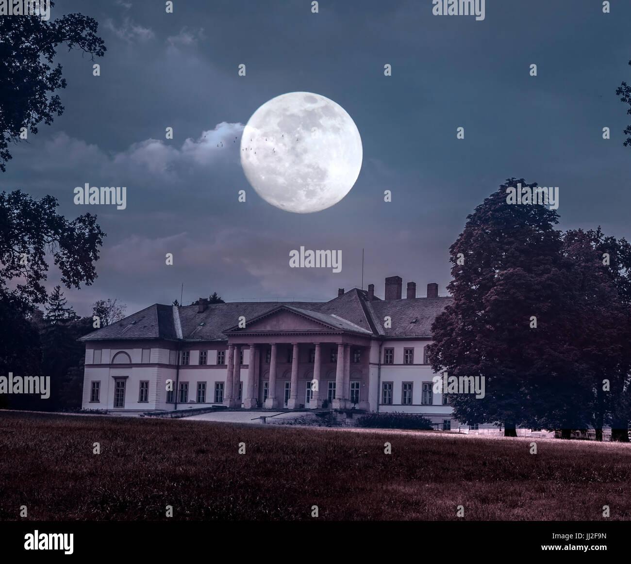 Spooky vieux château et la lune Photo Stock