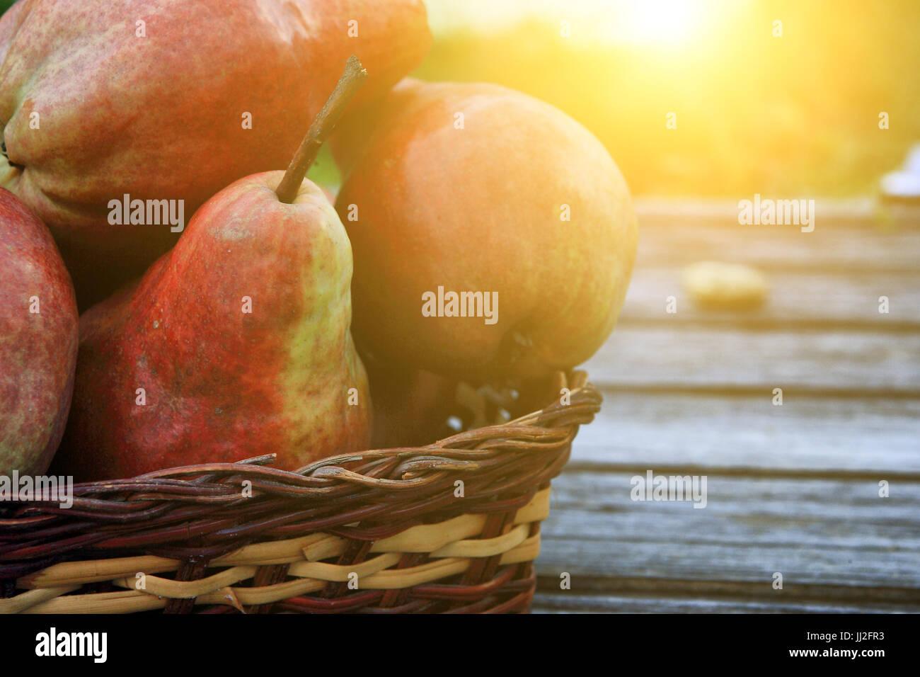 Groupe de poires Photo Stock