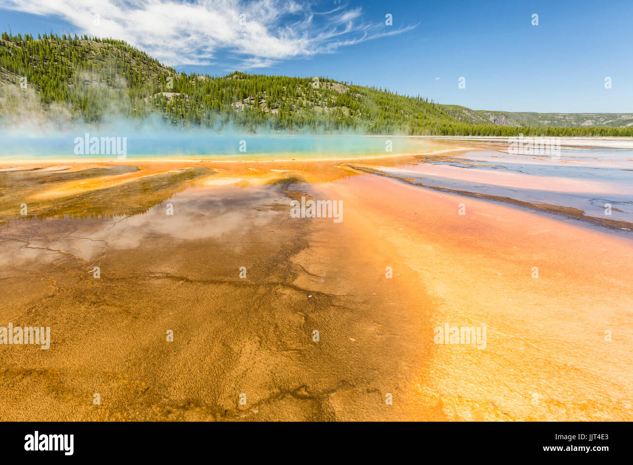 Vive les couleurs arc-en-ciel du Grand Prismatic Spring dans le Parc National de Yellowstone, Wyoming Banque D'Images