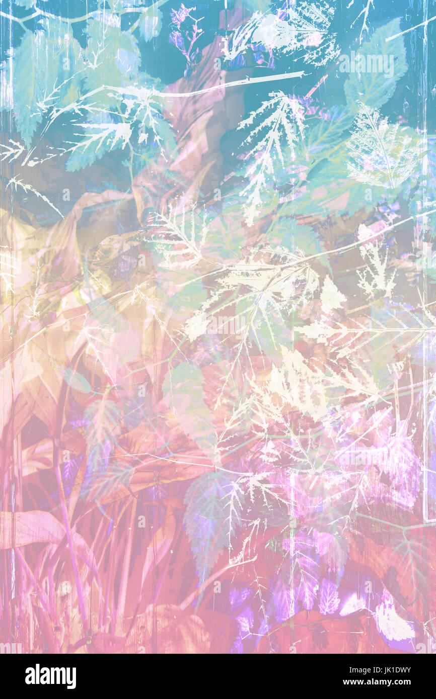Belle, l'arrière-plan artistique avec des feuilles et fleurs Photo Stock