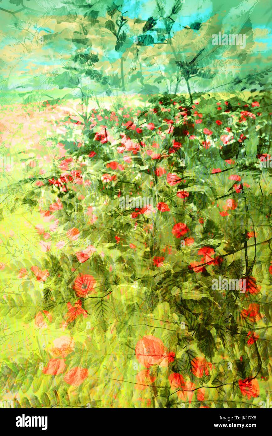 Beau, l'été, floral, fond artistique Photo Stock