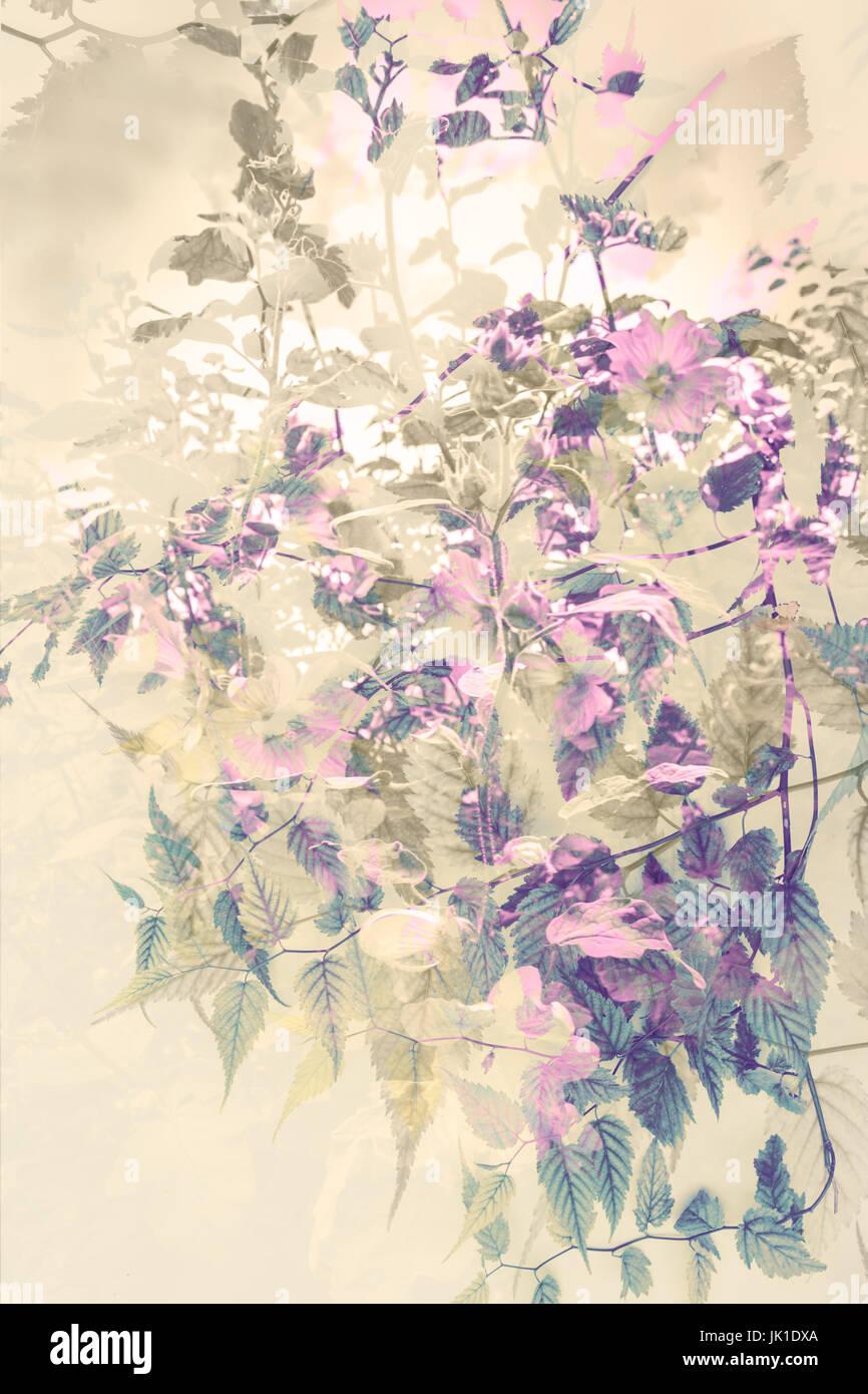 Floral background artistique, avec de subtiles fleurs Photo Stock
