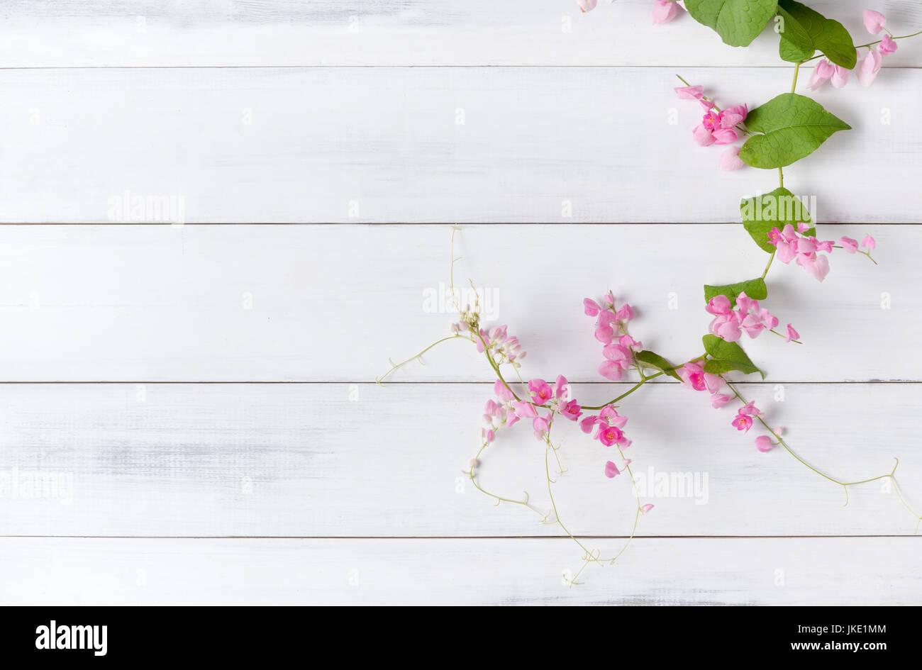 Reducteur Mexicaine Fleur Rose Sur Fond De Bois Blanc Avec Copie