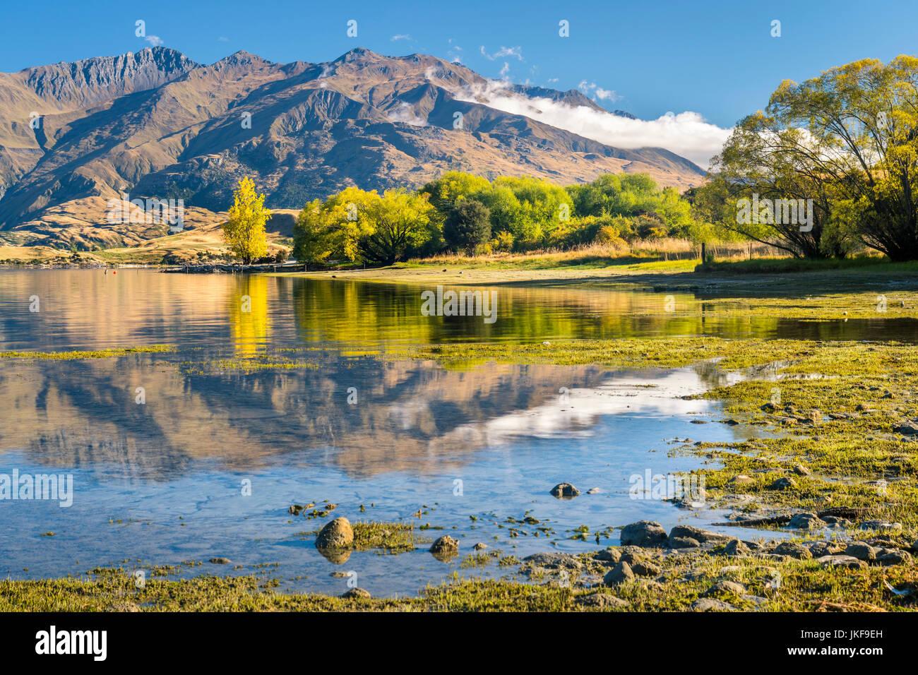 Nouvelle Zélande, île du sud, gledhu Bay au lac Wanaka Photo Stock