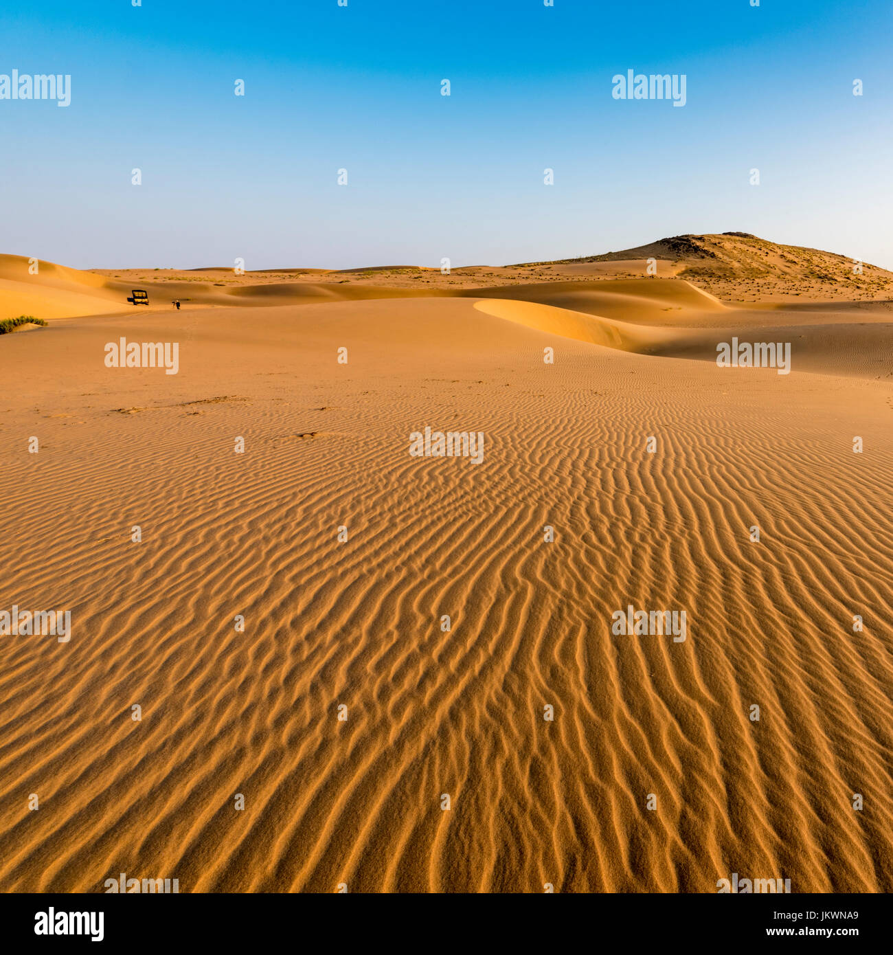 Sand Dunes in early morning light près de Serra Cafema Camp en Namibie. Photo Stock