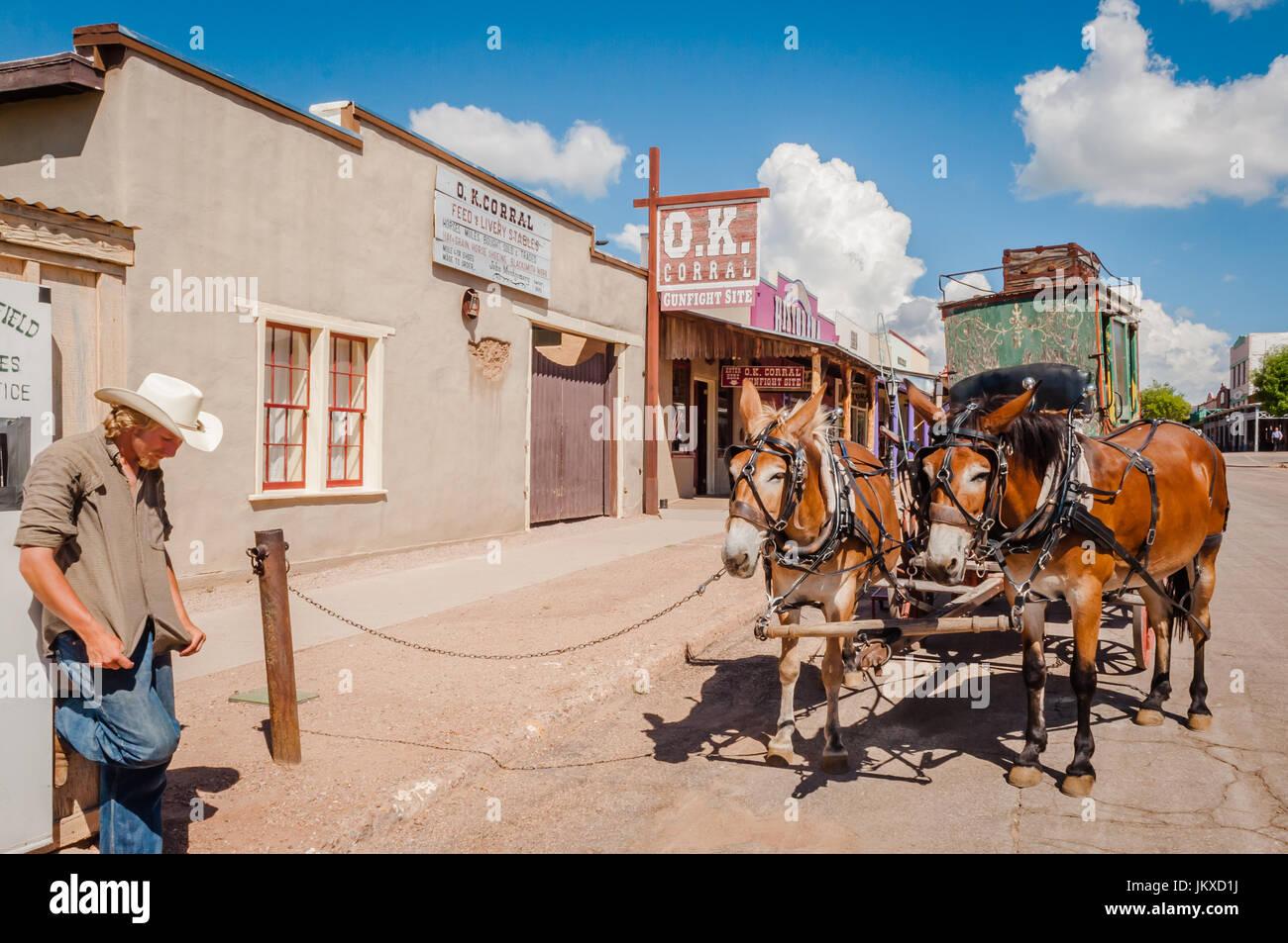 Mule-appelée conducteur de diligence s'attendent les clients à Tombstone Arizona Banque D'Images