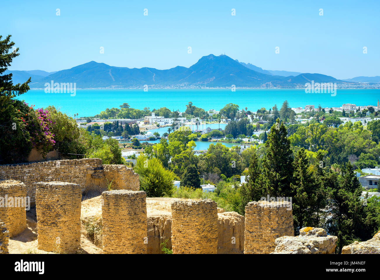 Paysage avec ruines antiques de Carthage. Tunis, Tunisie, Afrique Photo Stock