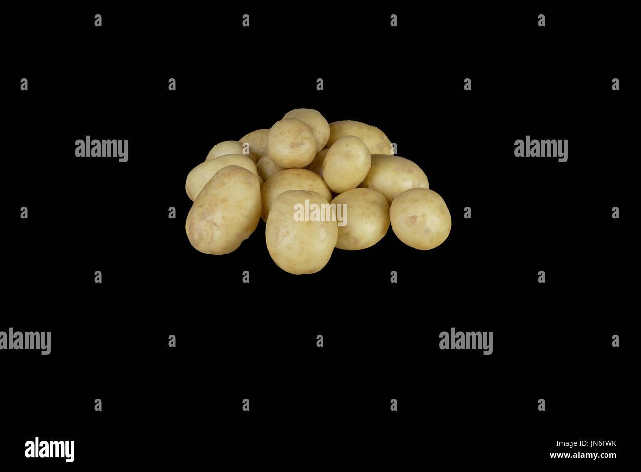 Une pyramide de nouvelles pommes de terre de l'Ayrshire tout droit sorti de l'contributeurs jardin et nettoyé et empilés sur une planche en bois qui est ensuite isolé sur un noir Photo Stock