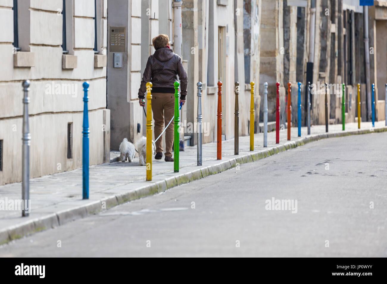 fed89ffc1494 France - 5 mars 2016   deux chiens blancs colorés de bollards passé rue