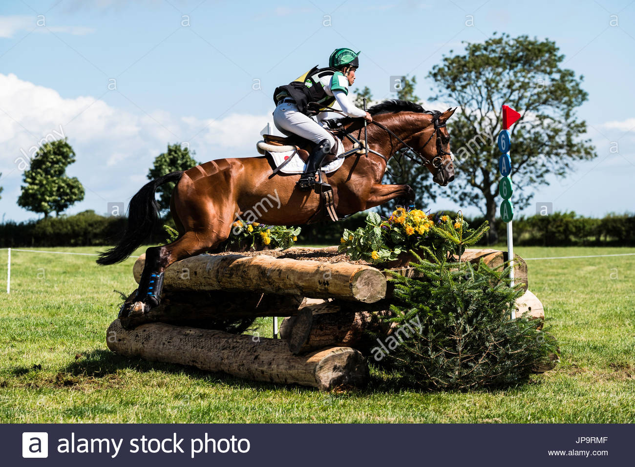 Burgham, Morpeth, Northumberland, Angleterre. 28/29ème Juillet 2017. La compétition à Eventers Burgham International Horse Trials, dans les disciplines du dressage, Showju Photo Stock