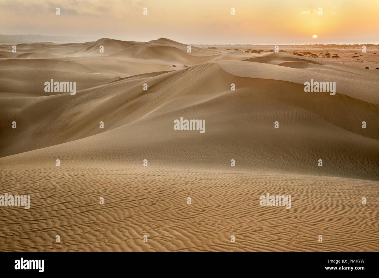 Première lumière sur les incroyables dunes de sable d'Eucla. Banque D'Images