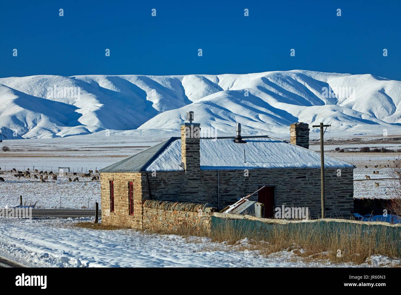Cottage en pierre historique et de l'Ida en hiver, gamme Hills Creek, Maniototo, Central Otago, île du Sud, Nouvelle-Zélande Photo Stock