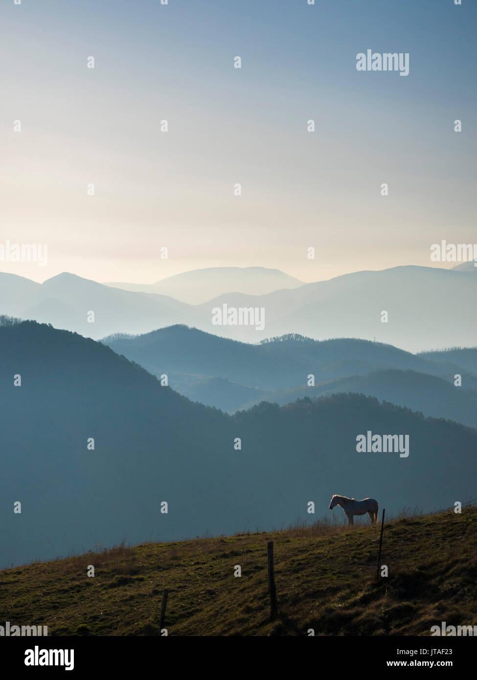 Au lever du soleil, l'Apennin, Ombrie, Italie, Europe Photo Stock