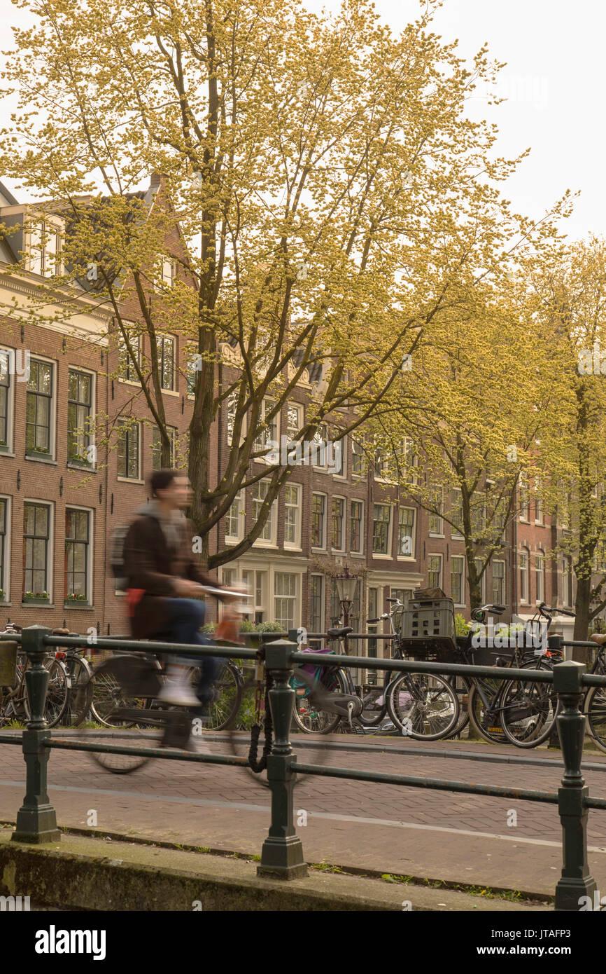 Vélo homme pont sur le canal de jonction avec Lauriergracht, Amsterdam, Pays-Bas, Europe Banque D'Images