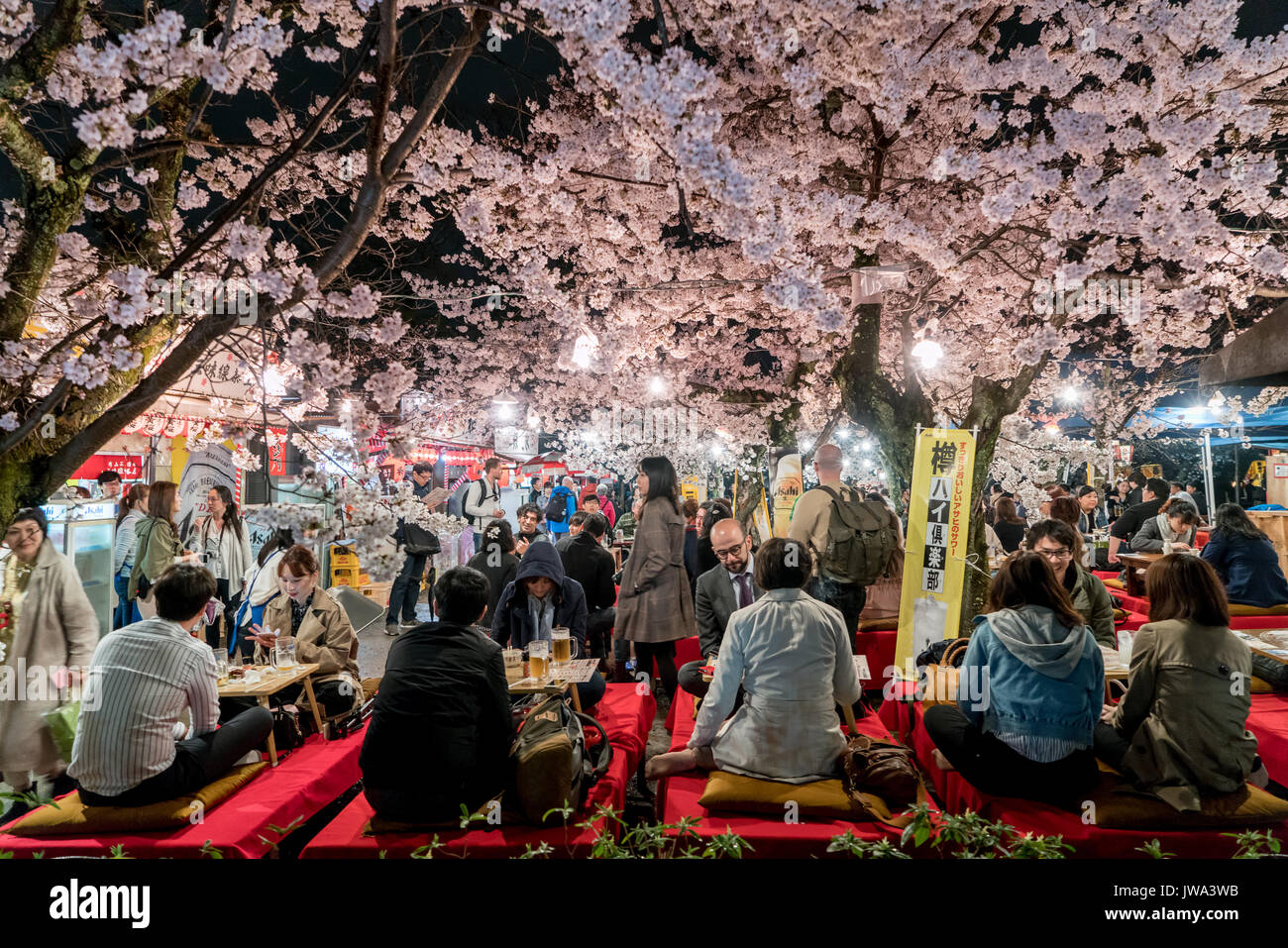 KYOTO, JAPON - 7 avril, 2017: Japon foule profiter du printemps les cerisiers en fleurs à Kyoto en participant au nuit saisonniers festivals Hanami dans parc Maruyama Photo Stock