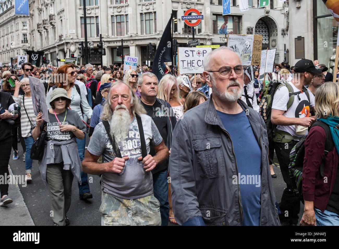 Londres, Royaume-Uni. 12Th Aug 2017. L'acteur Peter Egan, se joint à la manifestation organisée par la coalition de l'histoire de chasse faire le blaireau, confiance et Care2. Les manifestants ont défilé à travers le centre de Londres et se sont rassemblés à l'extérieur de Downing Street. Crédit: David Rowe/Alamy Live News Photo Stock