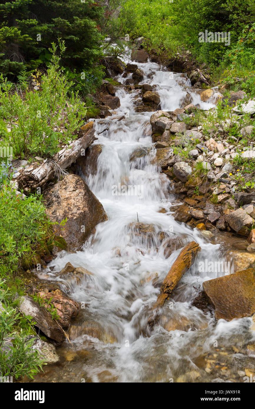 Un ruisseau saisonnier déverse une montagne en granite Canyon sur sa façon de Granite Creek dans le Teton Mountains. Banque D'Images