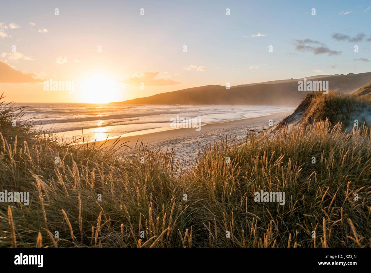 Coucher du soleil sur la plage, la baie de phlébotome, Otago, île du Sud, Nouvelle-Zélande Banque D'Images