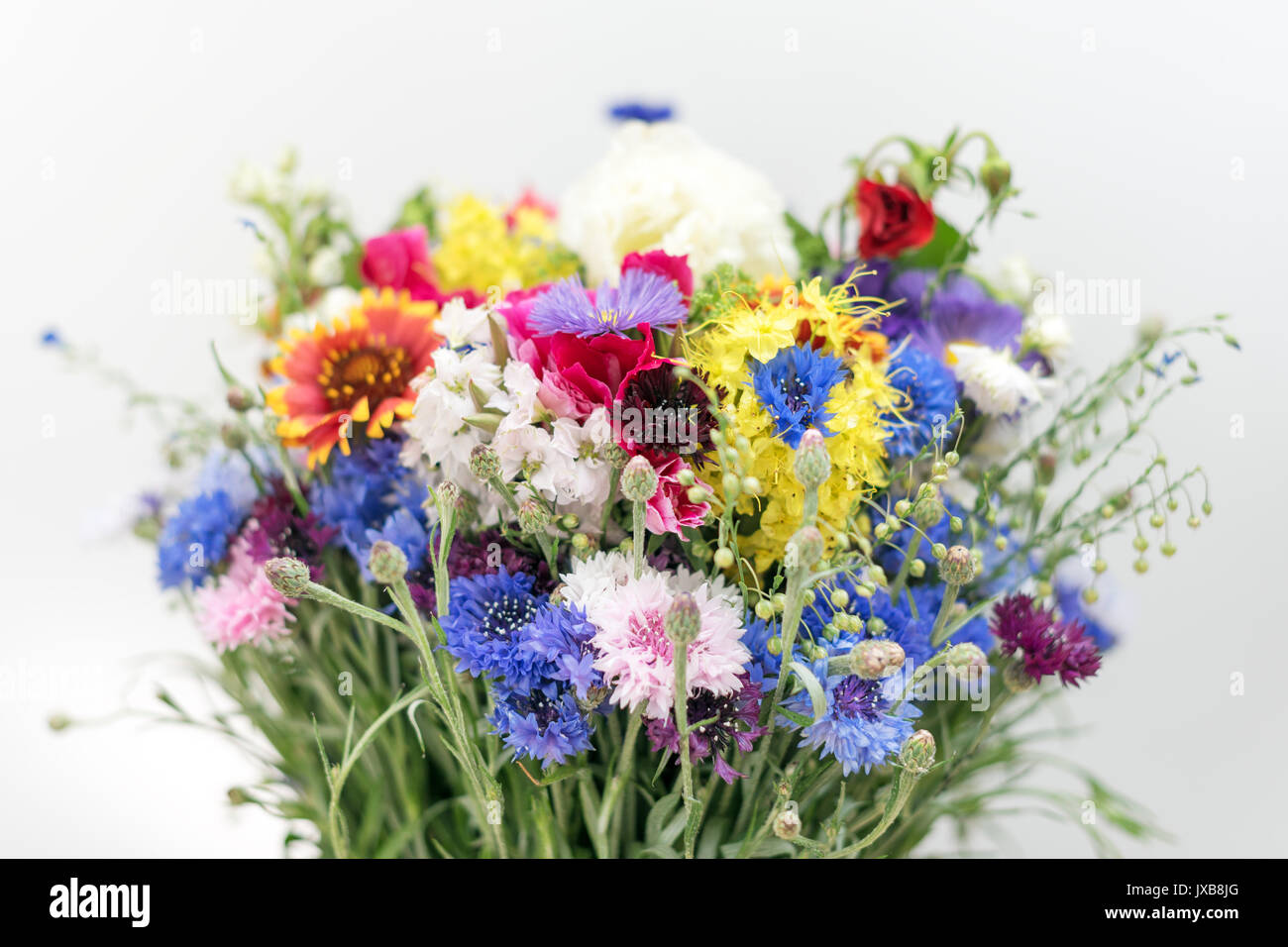 Bouquet de fleurs sauvages bouquet de fleurs et herbes sauvages sur le terrain banque d 39 images - Bouquet de fleurs sauvages ...