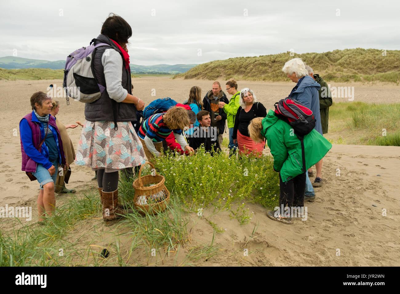 Un Groupe De Personnes Dirigee Par Ressources Naturelles D