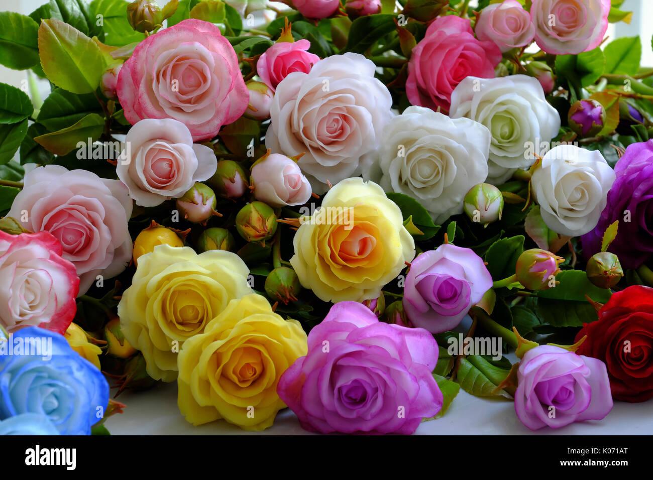 Fond De Fleurs Roses Colorees Groupe De Rose Multicolore Faire De L