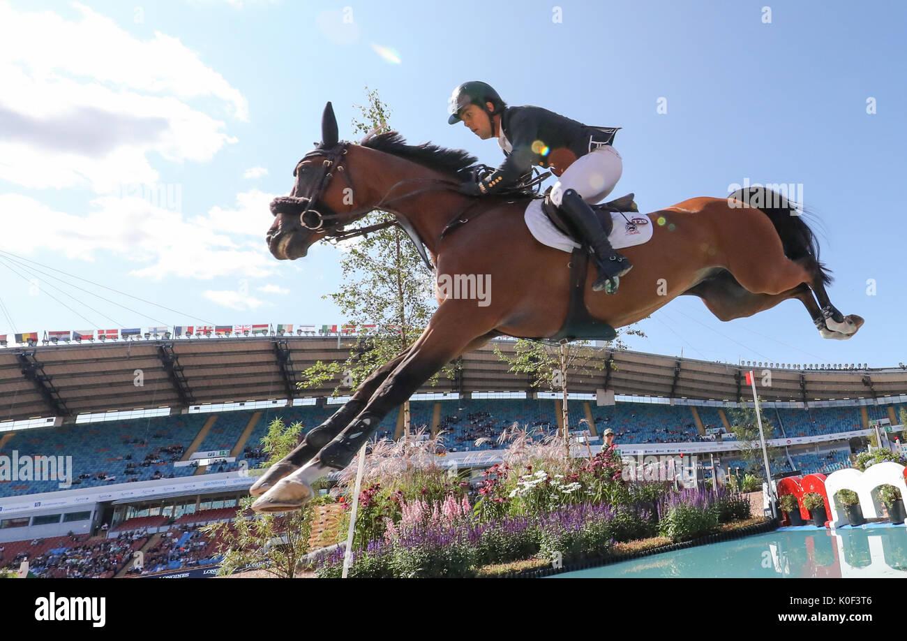 cheval espagnol et saut d'obstacle