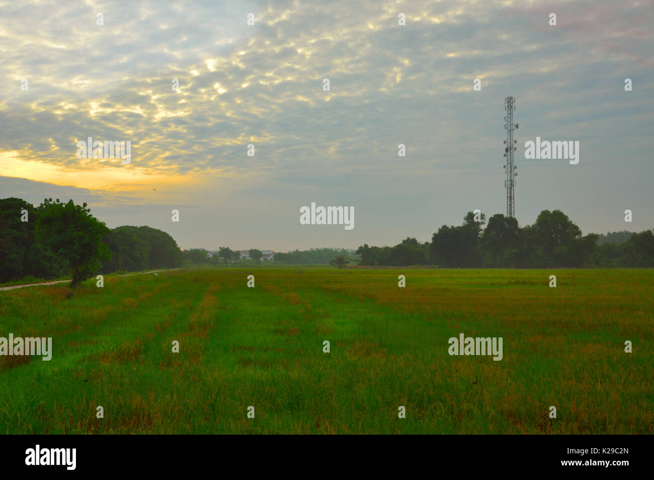 Voir site rural Photo Stock