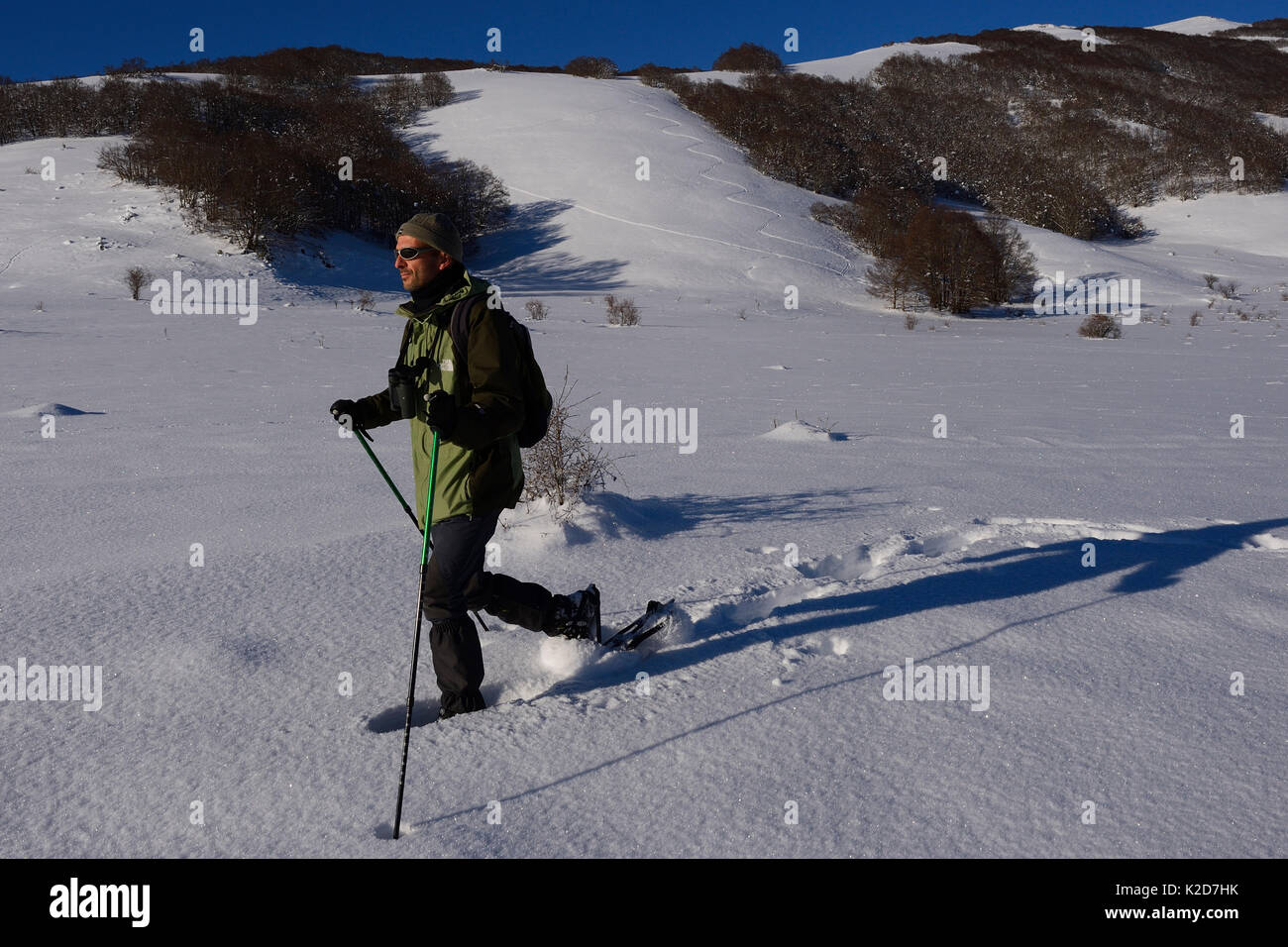 Dans la raquette, l'homme des Apennins Centrales Rewilding, Italie, novembre 2013. Photo Stock