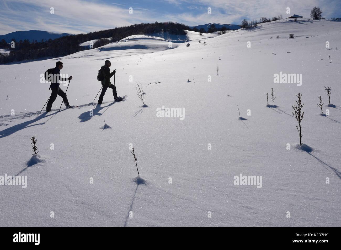 Deux hommes de la raquette dans l'Apennin Central rewilding, Italie, novembre 2013. Photo Stock