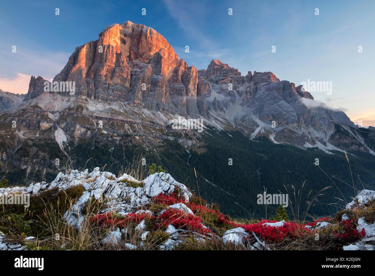 La première lumière sur Tofana de Rozes de Cinque Torri, Dolomites, province de Belluno, Vénétie, Italie, septembre Banque D'Images