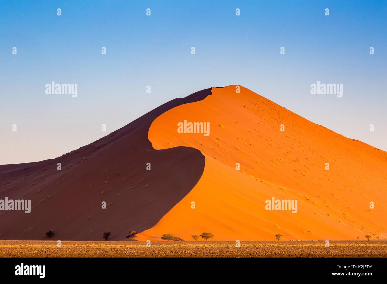 Le désert de Namib, sossusvlei. dunes de sable au coucher du soleil, la Namibie, l'Afrique Banque D'Images