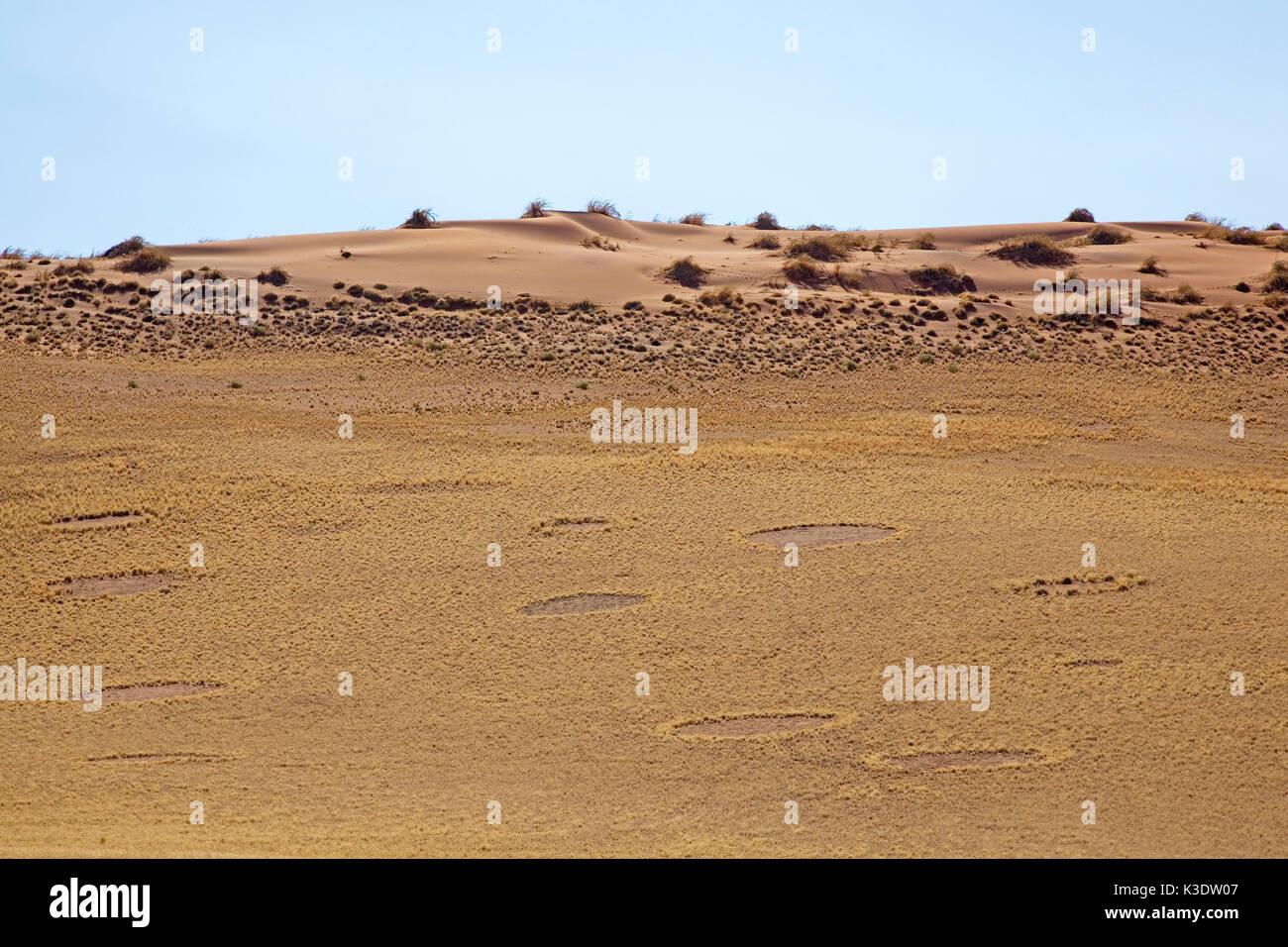 L'Afrique, Afrique australe, la Namibie, Hardab région, Sossusvlei, Namib Naukluft park, cercles de fées, par les termites causes Photo Stock