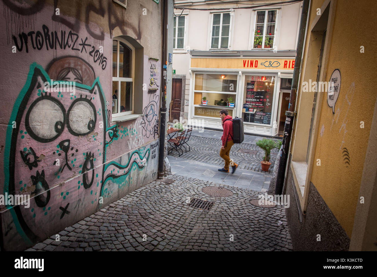 Vieille ville de Ljubljana Photo Stock