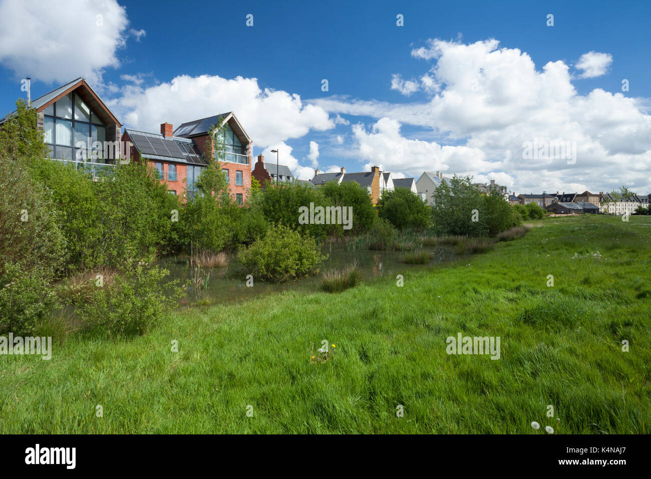 Un mélange de styles architecturaux contemporains à côté d'un parc doté de bords respectueux de la faune et des zones humides pour la capture de l'eau de pluie, Northampton, en Angleterre. Photo Stock
