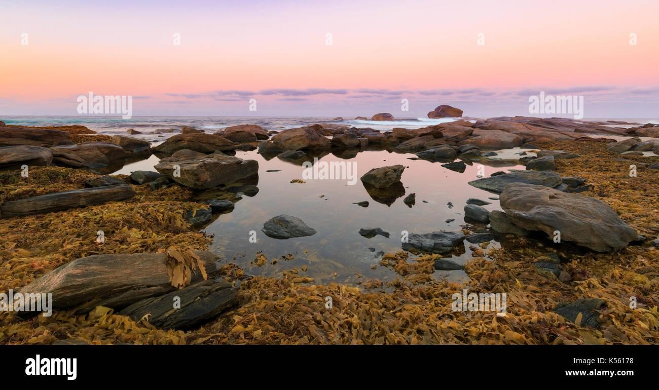 Les algues qui entourent une piscine dans les rochers à plage de Redgate au lever du soleil. Parc National Leeuwin-Naturaliste, Margaret River, Australie-Occidentale Photo Stock