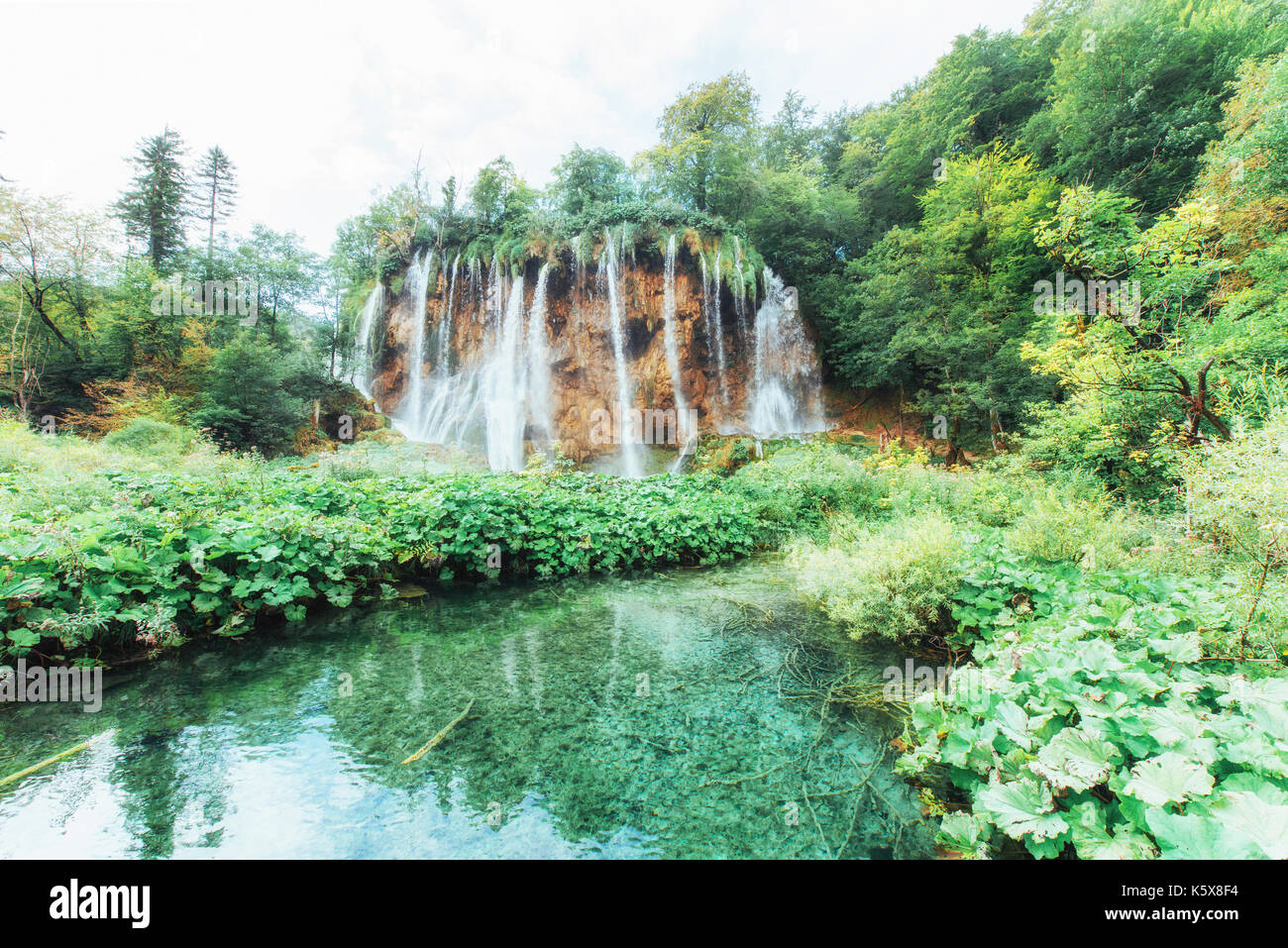 Une photo de poissons nageant dans un lac, prises dans le parc national de Plitvice croatie. Photo Stock