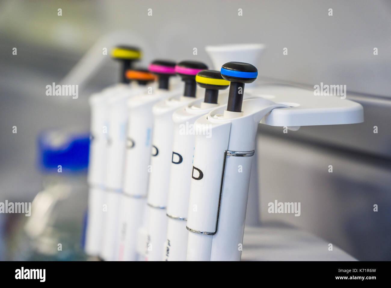 Le travail en laboratoire avec les pipetts. cell division travaux. Photo Stock